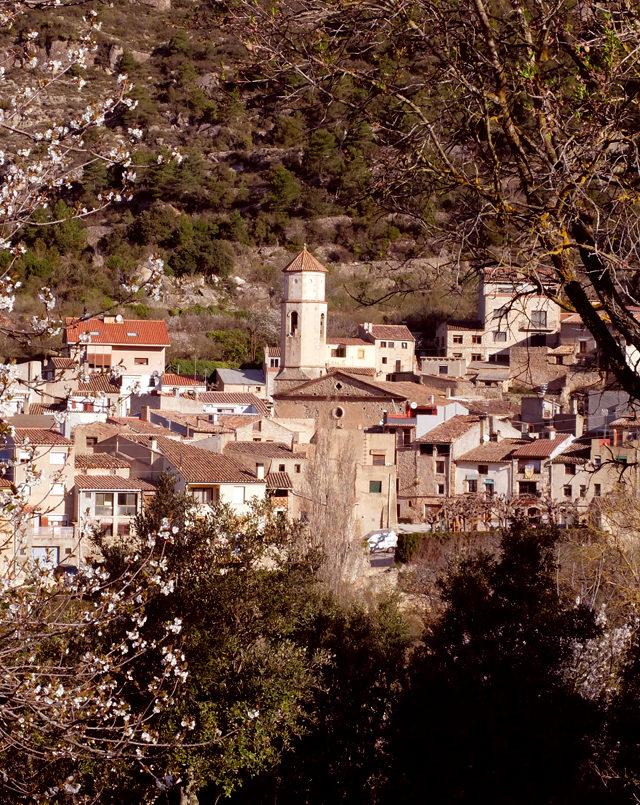 Poble Arbolí - La Devesa - 1